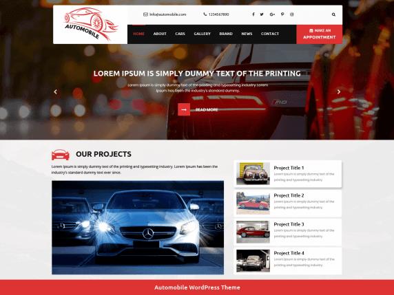 Automobile Car Dealer